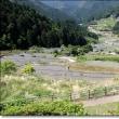 四谷の千枚田に行って来ました。
