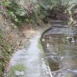 養老川上流