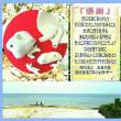 オカリナのある風景🎵「珊瑚笛」…母なる海の囁(ささや)き