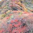 2017   三俣山お鉢巡り