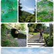 剣山へ登りました