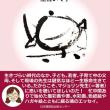 新刊『マジョリン先生 おはなしきいて』の読者さんから嬉しいお手紙!