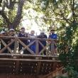 『森のひみつきち』に登りました!