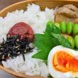 鶏とちくわと根菜の煮物弁当