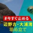 辺野古をジュゴンを守る海洋保護区に 署名嘆願<>