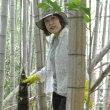 1日で苺狩りと、竹の子掘りのハシゴです☆