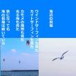 海辺の祝福