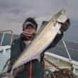 12/16(土)天気意外と穏やかで釣りバッチリOK でした^^釣果もハマチ入れ掛かりにメジロにサワラ・サゴシに根魚等ヽ(*^^*)ノ