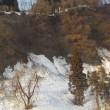 凍み渡りで朝散歩(その2終わり)
