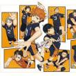 ☆【309】ハイキュー スタンドミラー 「10」日向翔陽
