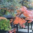 奈良県に行ってきました~~~