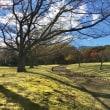 南立石公園