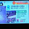 10/19 養殖の鮎が火山灰で窒息した