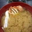 ウロコジュウで海鮮丼!!