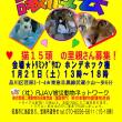 1月21日猫の譲渡会♥武蔵小山にて