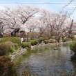 水沢公園2