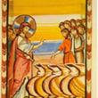 『やっと考えることと知識がかみ合い始めた』・・・カナの婚姻・・・『それで、弟子たちはイエスを信じた。』