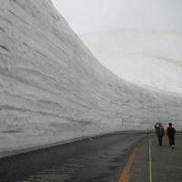 立山・雪の大谷ツアー