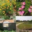 自然の営みの中で共生する社会  東京都足立区「都市農業公園」