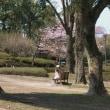 春だ花見だカメラをもって植物園へ行こう