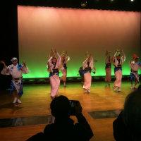 伝統の踊りが、毎日見れます!