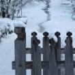 二尊院、雪景色とその周辺