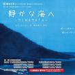 「静かな海へ-MINAMATA-」新聞掲載のお知らせ