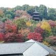 栃木県の星野リゾートに泊まる