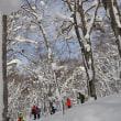 1月8日「初めてでも気軽に歩ける!スノーシュー体験ツアー 山毛森の主に会いに」を開催しました。