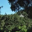 葛城高原山頂から下山 ウォーキング