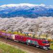 2019年も一目千本桜をめぐる列車たち
