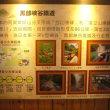 「台湾」編 阿里山観光16 阿里山森林鉄道 奮起駅5