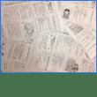 よこみちさんの童話、毎日新聞に連載中!!