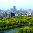 大阪城より