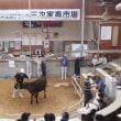 子牛市場に行きました