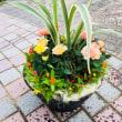 植物園緑化フェア