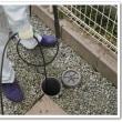 イエコマ排水管洗浄がテレビ東京で話題に。初回限定クリーニングは必見!