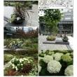 花壇-39 セントラルパーク ベルサール新宿
