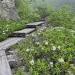 2018年7月6日(金) バスでゆく自然散歩~ニセコ神仙沼・五色温泉