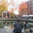 秋色の龍谷大学で学園祭