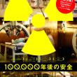 100,000年後の安全 (2009)