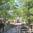 8/17(金)のPACニュース~暮らし&身近な法律・判例の情報