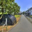 奈良県磯城郡田原本町阪手の風景