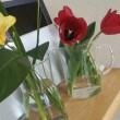 IKEAのお気に入り-7 ガラス製花器-