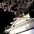 城と桜 2景