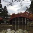 秋を満喫!(^^)!