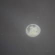水母、海月、水月
