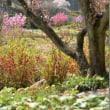 春の枝に花あり/夏の枝に葉あり/秋の枝に果あり/冬の枝に慰めあり 内村鑑三