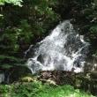 猿尾滝 手前の滝?