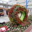 JR明石駅南口の植栽 on 2017-10-18